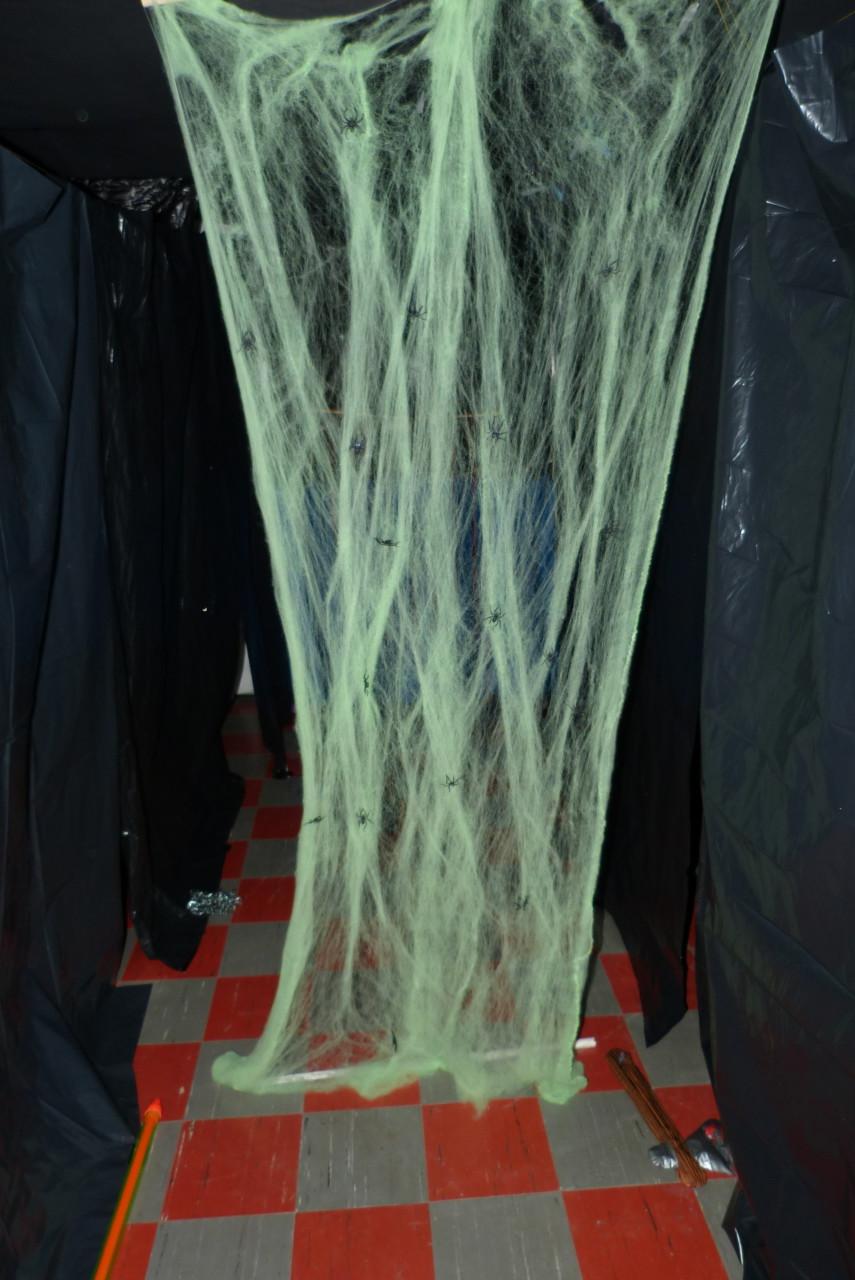 Wer traut sich durch das Spinnennetz?