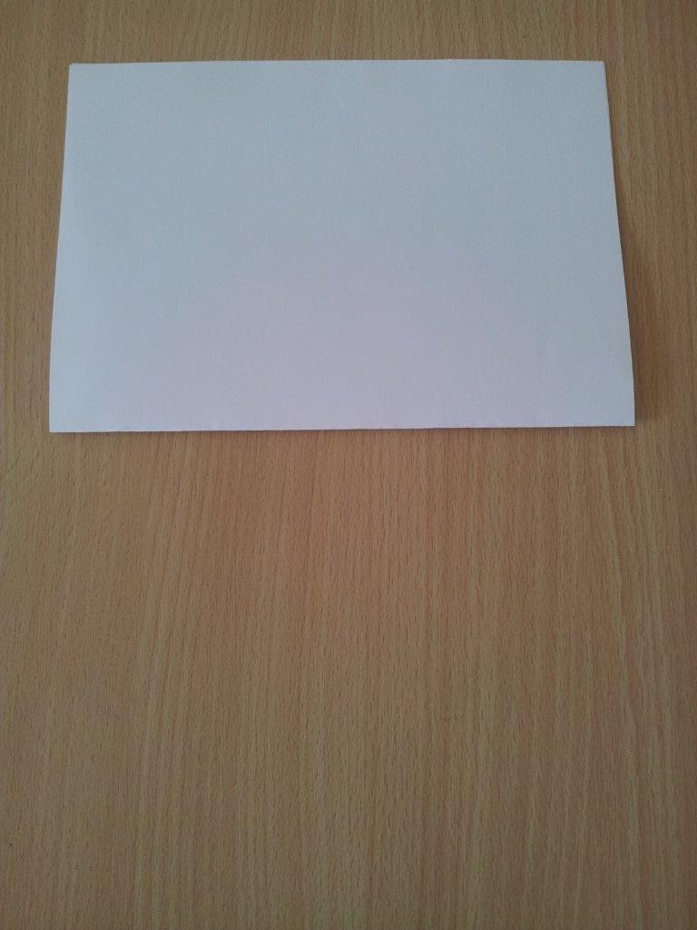 Halbiert das Blatt einmal, indem ihr es horizontal faltet